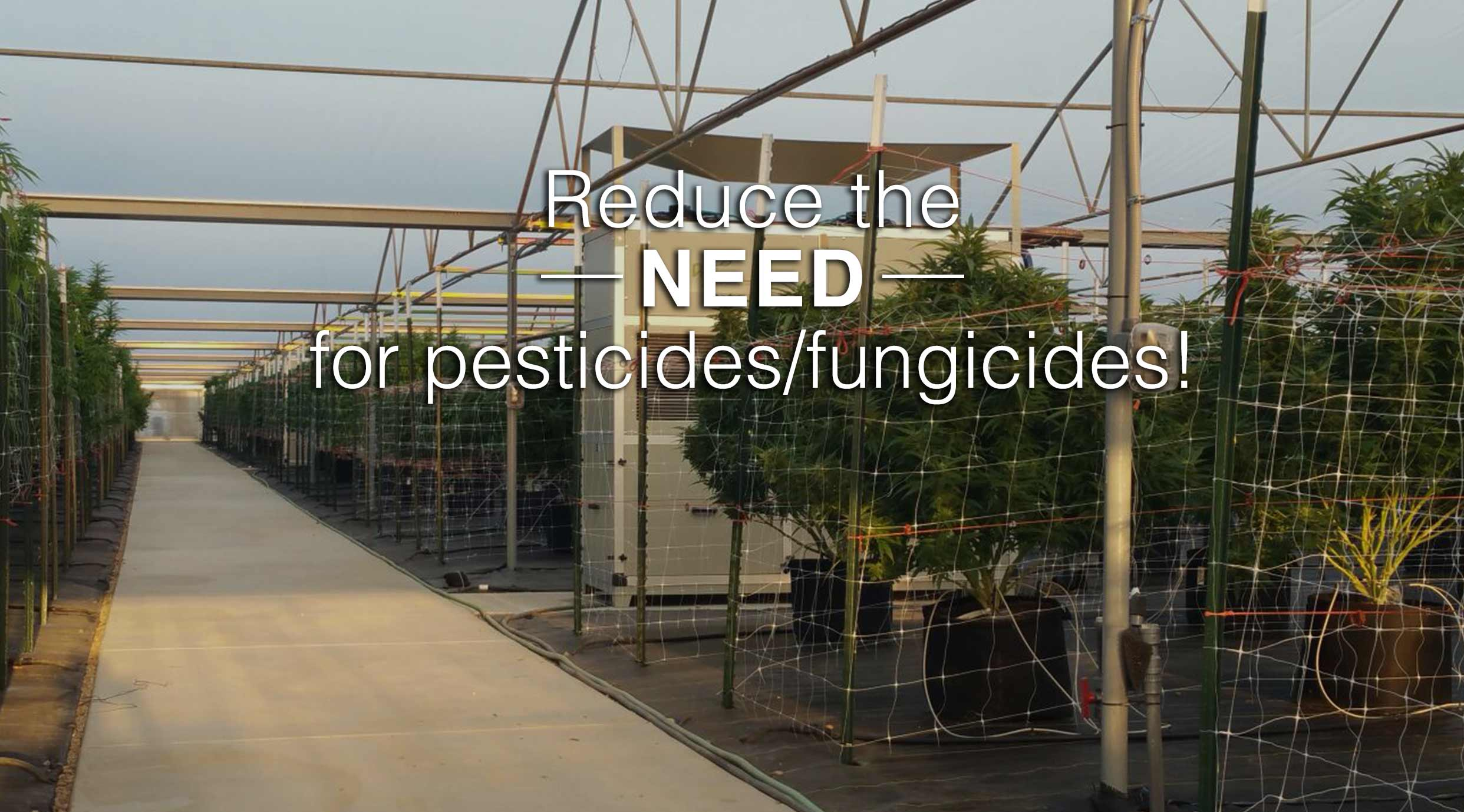 greenhouse dehumidifier reduce the need for pesticides or fungicides