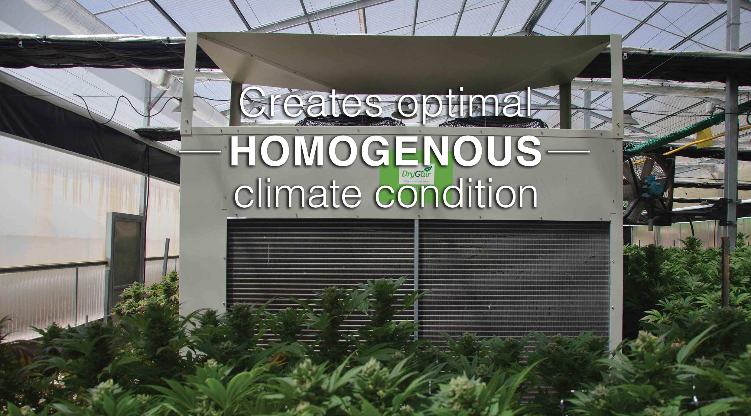 Drygair dehumidifier creates optimal homogenous climate conditions