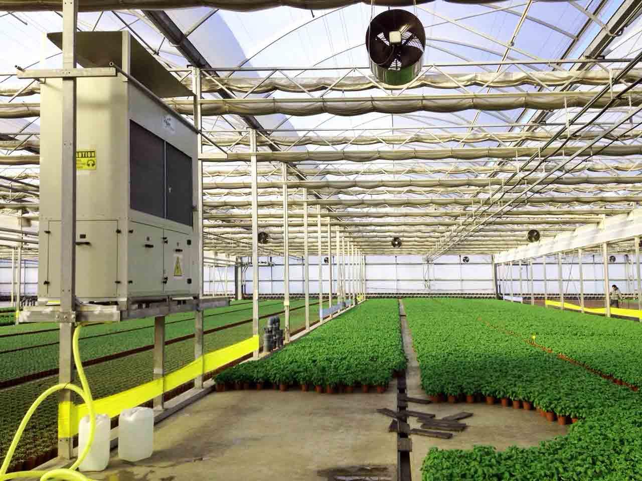 dehumidifier wirh plants in a greenhouse