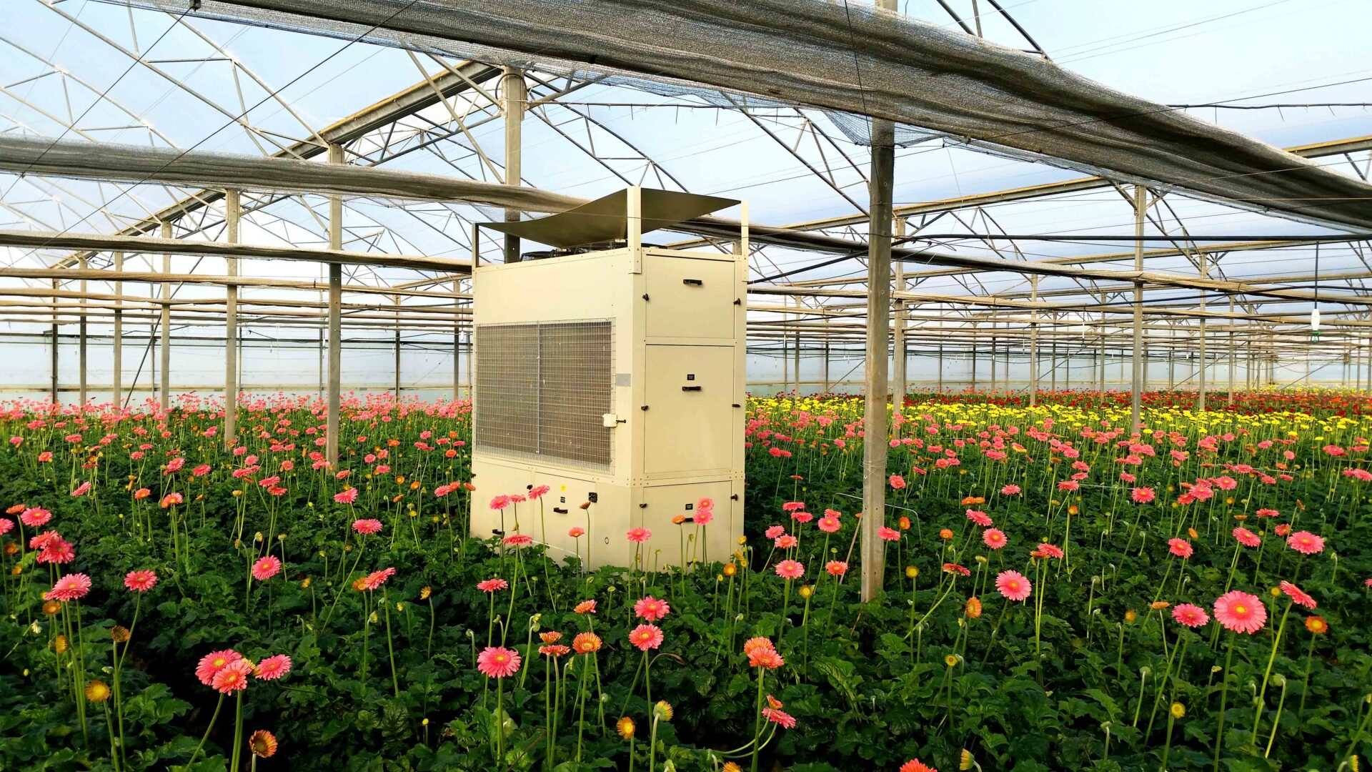 dehumidifier with pink and yellow flowers
