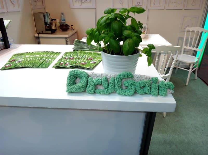 Drygair design with basil flowerpot