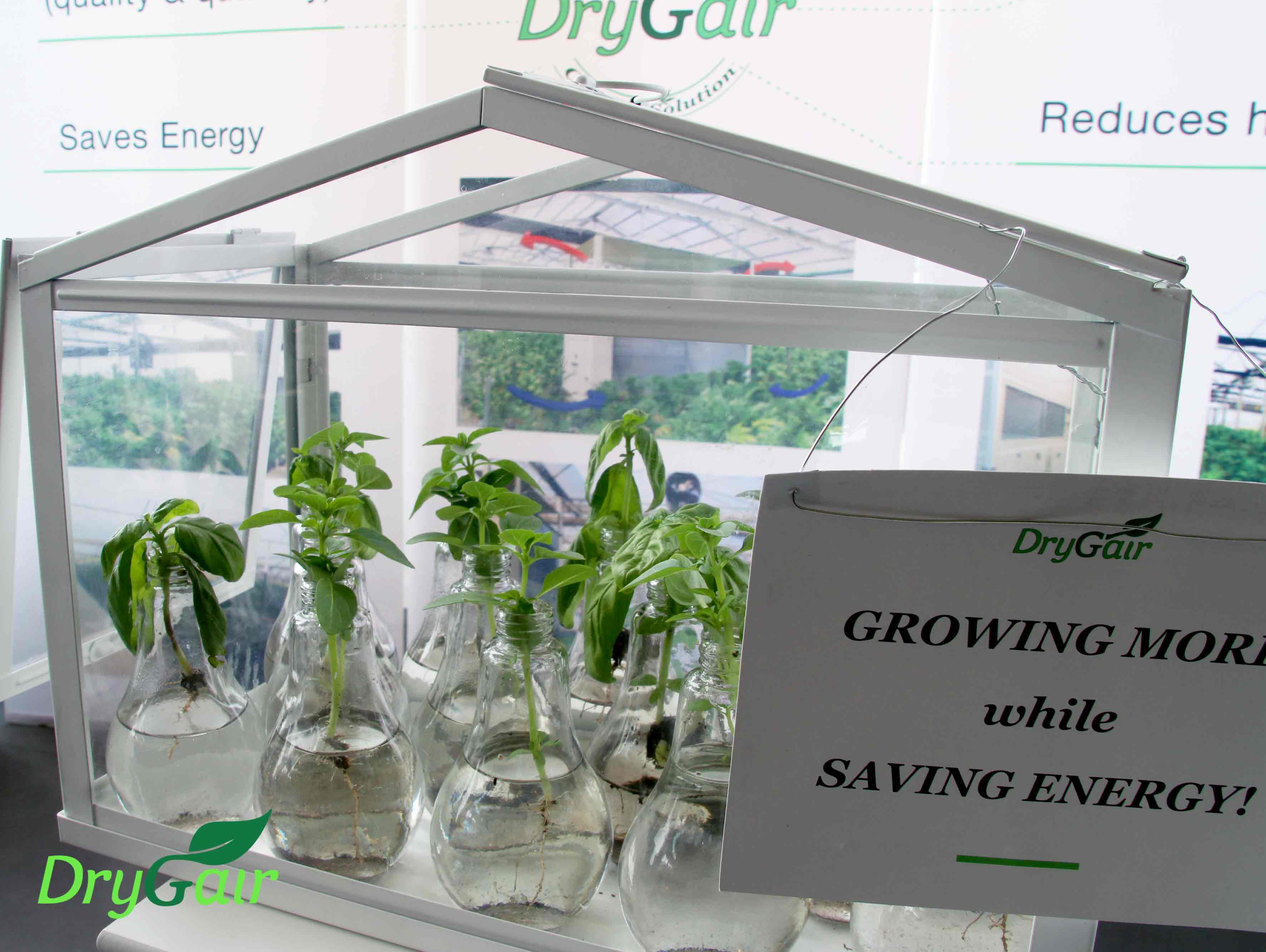 Drygair growing more saving energy