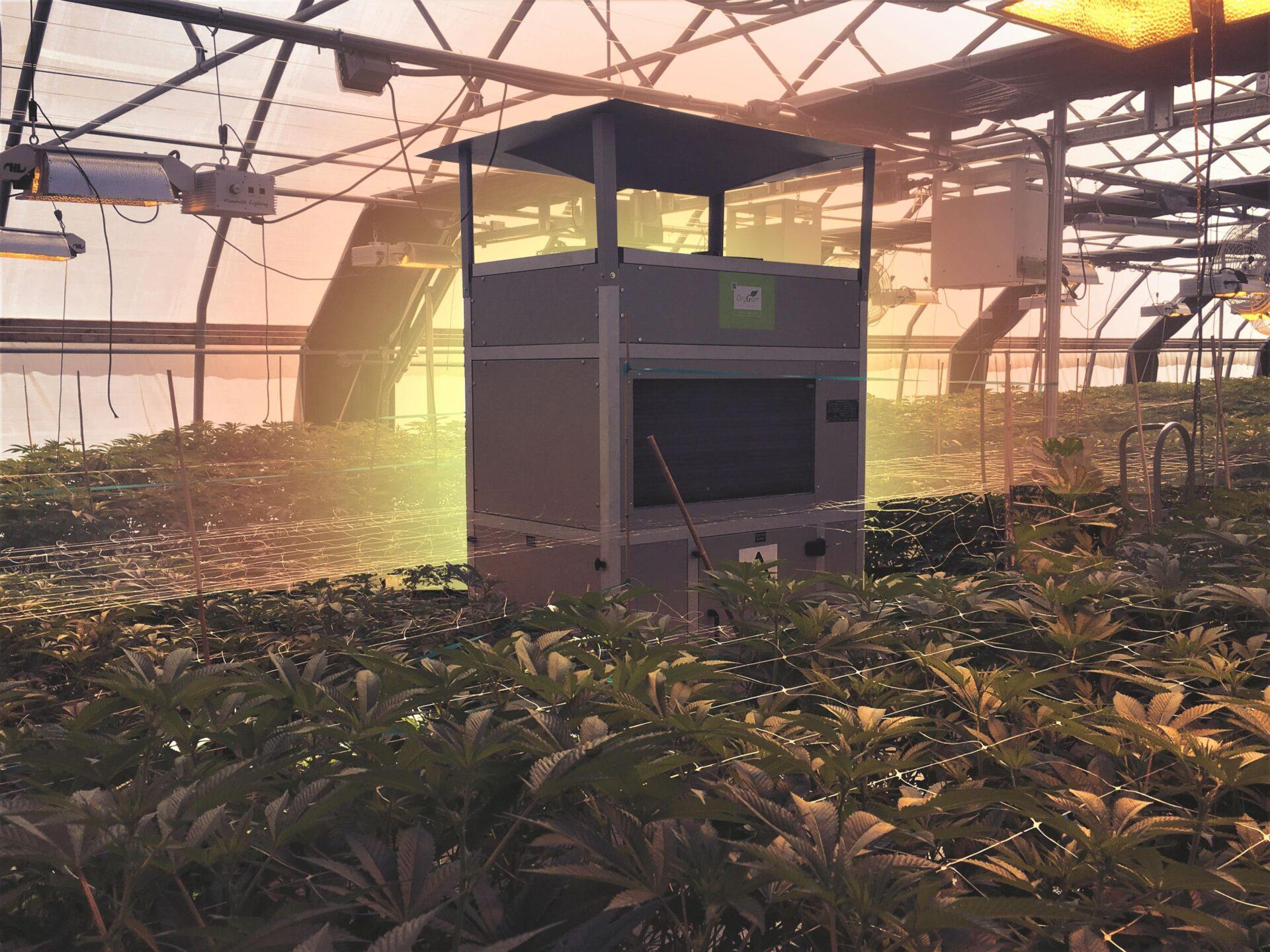 Drygair greenhouse dehumidifier plants