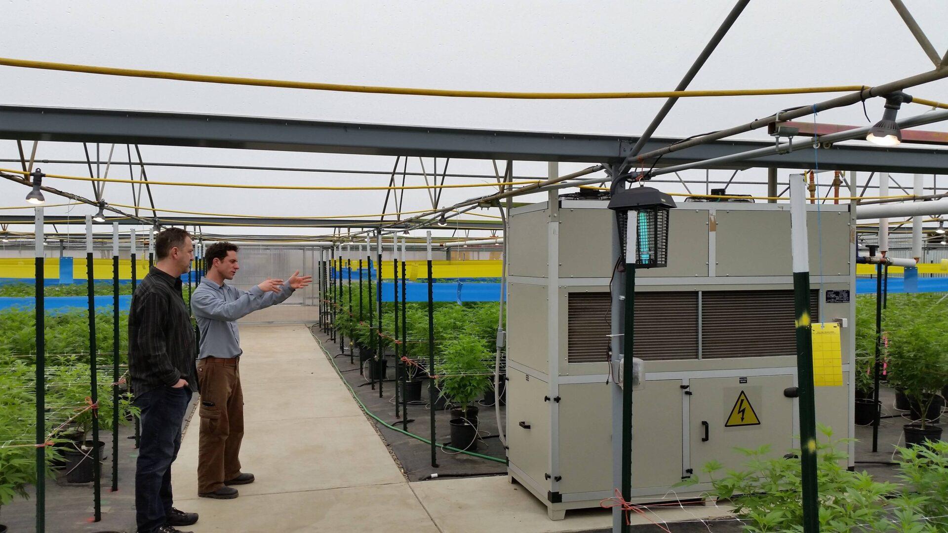 Drygair DG6 DG5 greenhouse dehumidifier small unit