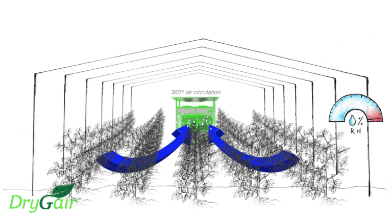 Greenhouse air circulation creates uniformity humid air from underneath the p-lants