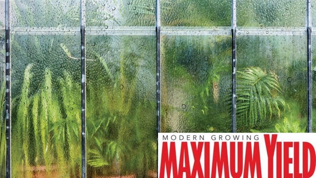 humidity maximum yield